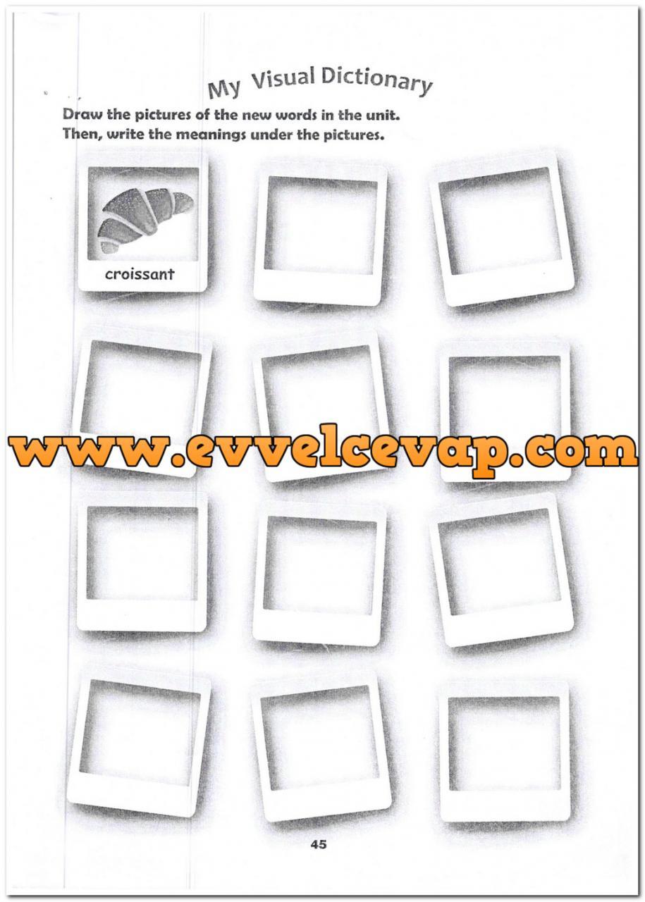 6 Sınıf Ingilizce Meb Yayınları Ders Kitabı Cevapları Sayfa 45