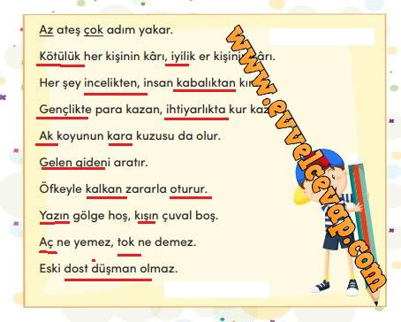 3. Sınıf Türkçe Ders Kitabı Meb Yayınları Sayfa 223 Cevabı