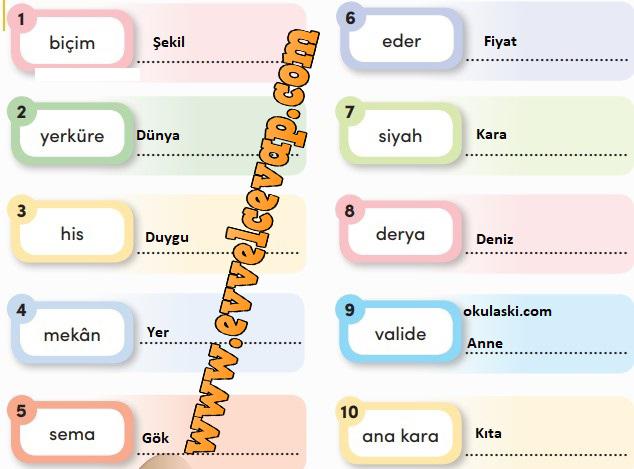 3. Sınıf Türkçe Ders Kitabı Meb Yayınları Sayfa 252 Cevabı