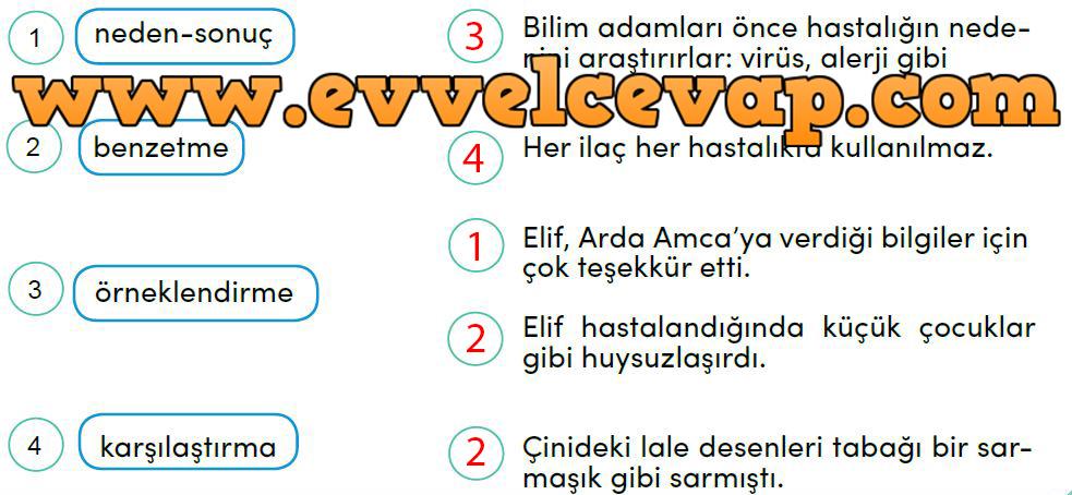 4 Sınıf Türkçe Meb Yayınları Ders Kitabı Cevapları Sayfa 228 Ders
