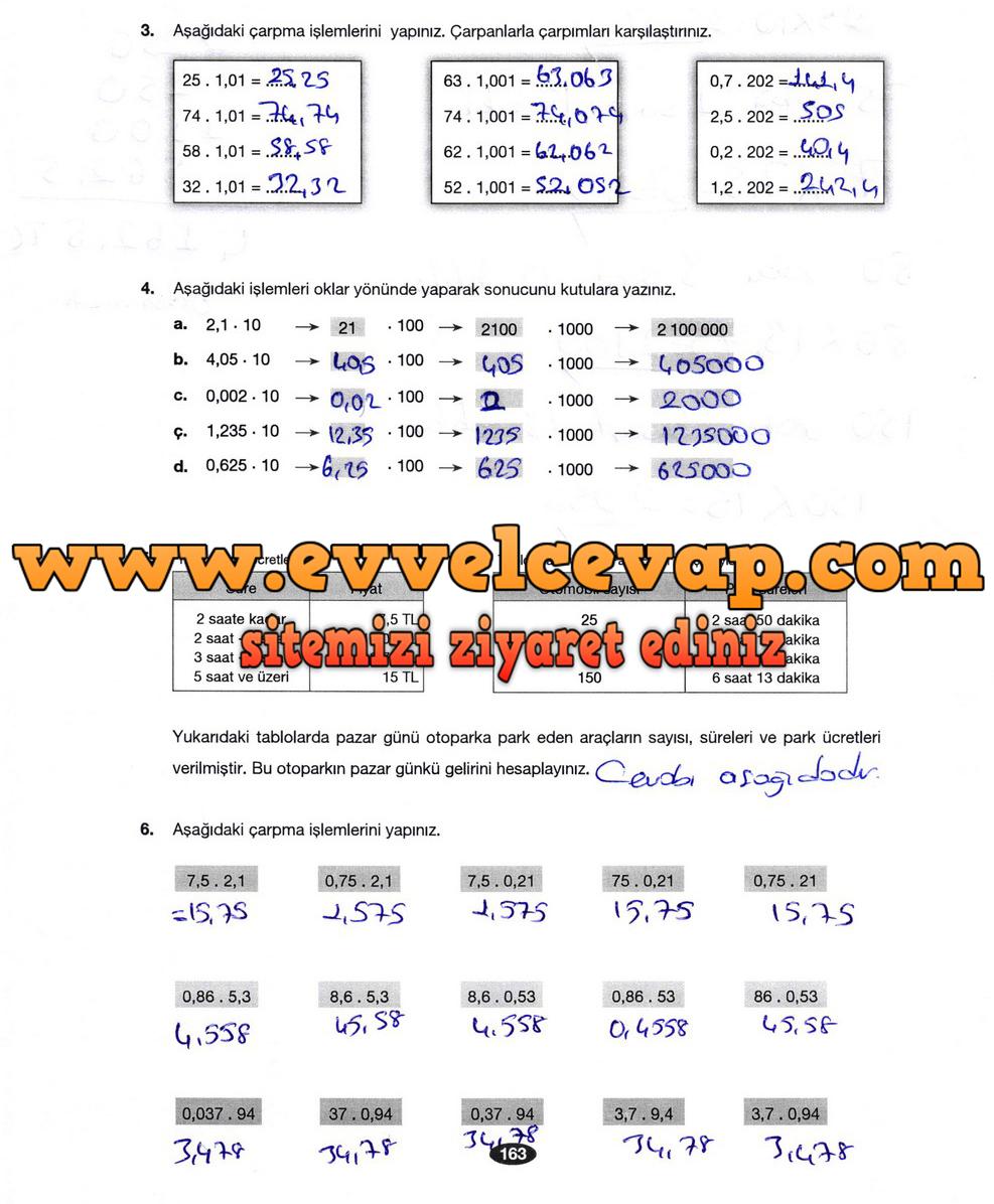 6 Sınıf Matematik Berkay Yayınları Ders Kitabı Cevapları Sayfa 163