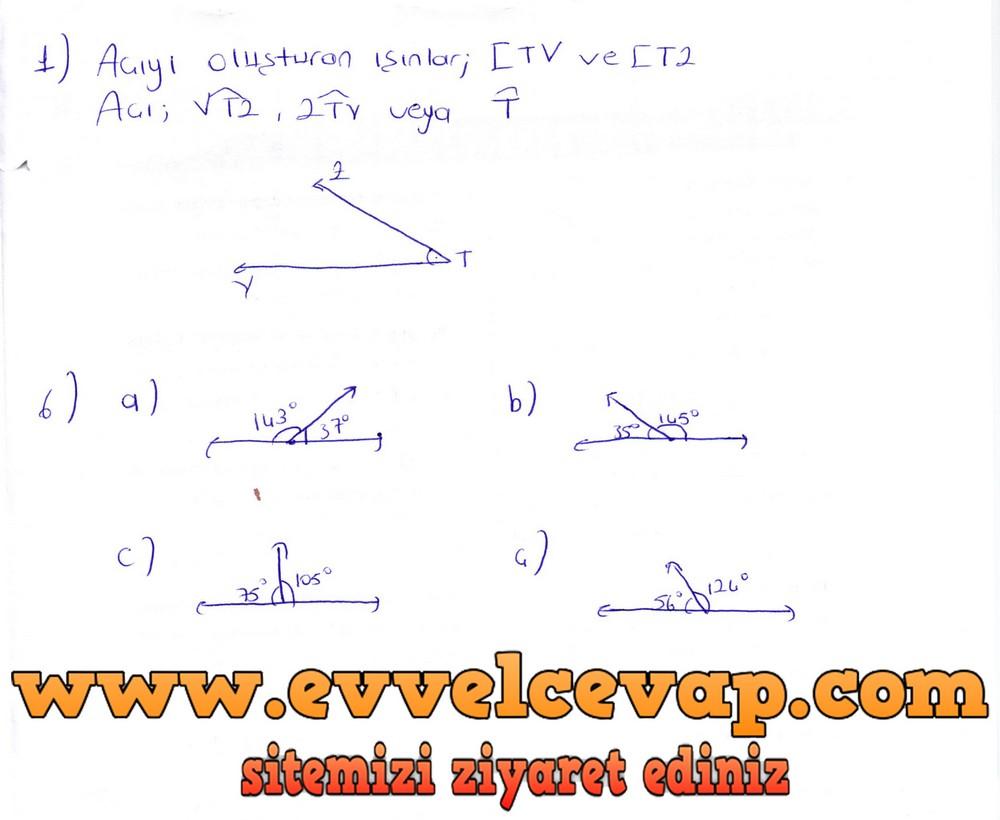 6. Sınıf Berkay Yayıncılık Matematik Ders Kitabı Sayfa 246 Cevapları