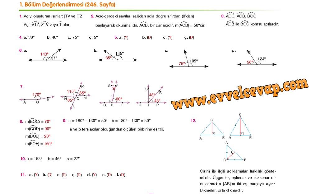 6. Sınıf Berkay Yayıncılık Matematik Ders Kitabı Sayfa 246 Cevabı