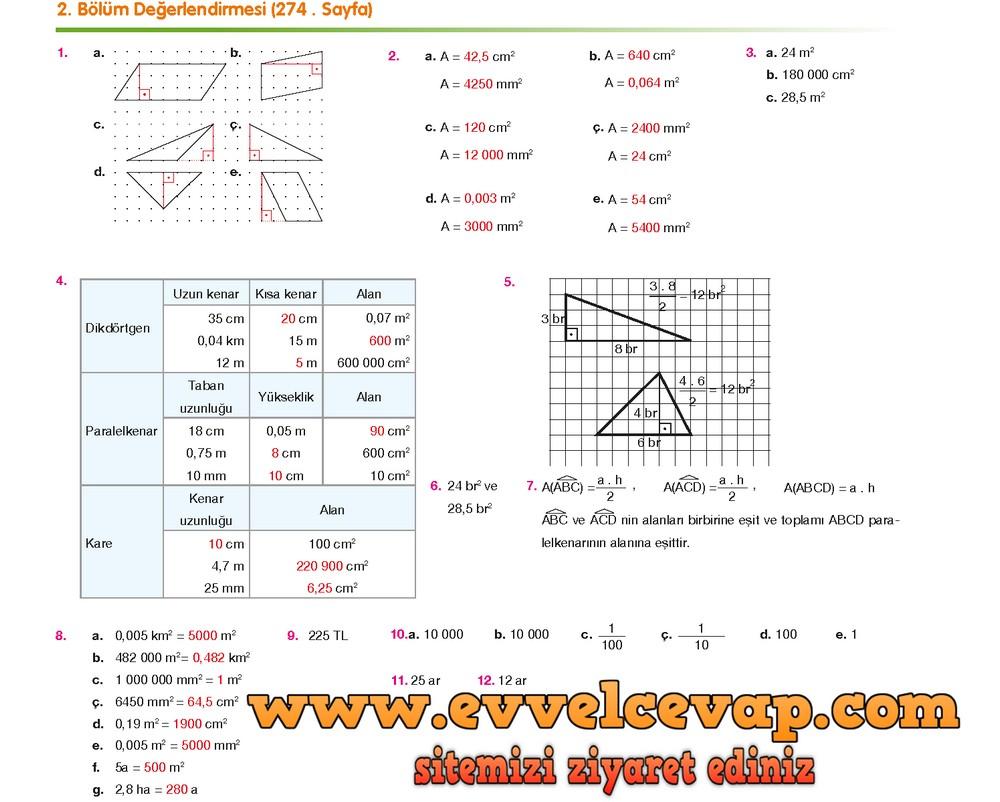 6. Sınıf Berkay Yayıncılık Matematik Ders Kitabı Sayfa 274 Cevabı