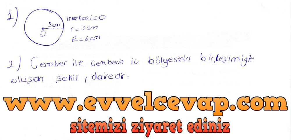 6. Sınıf Berkay Yayıncılık Matematik Ders Kitabı Sayfa 292 Cevapları