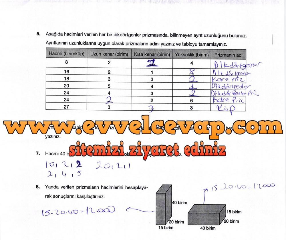 6. Sınıf Berkay Yayıncılık Matematik Ders Kitabı Sayfa 310 Cevabı