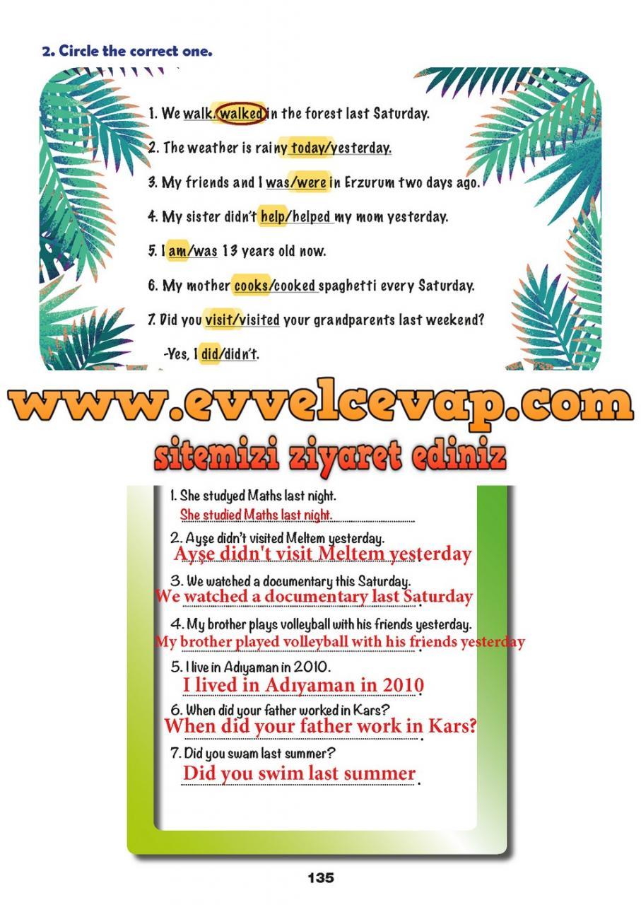 6. Sınıf Meb Yayınları İngilizce Ders Kitabı Sayfa 135 Cevabı