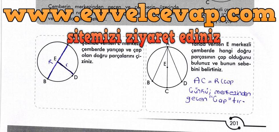 6. Sınıf Meb Yayınları Matematik Ders Kitabı Sayfa 201 Cevabı