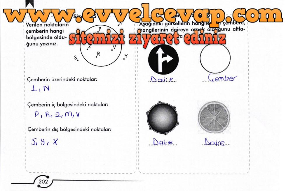 6. Sınıf Meb Yayınları Matematik Ders Kitabı Sayfa 202 Cevabı