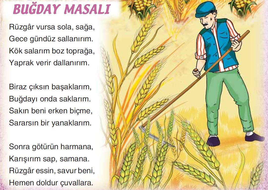 3 Sinif Turkce Sonuc Yayinlari Ders Kitabi Cevaplari Sayfa 133