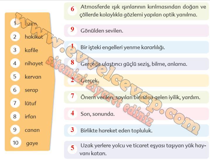 6 Sinif Turkce Ekoyay Yayinlari Ders Kitabi Cevaplari Sayfa 118