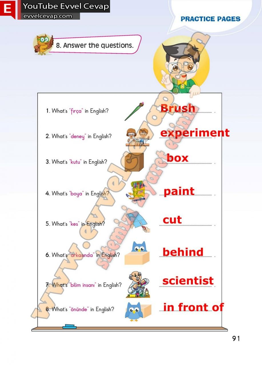4 Sinif Ingilizce Fcm Yayinlari Ders Kitabi Cevaplari Sayfa 91