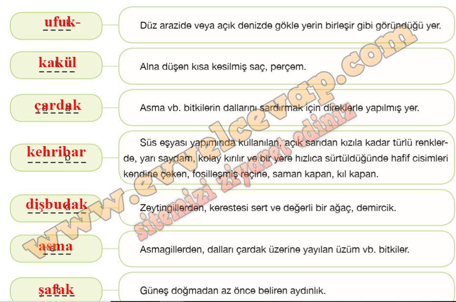 7 Sinif Turkce Ozgun Yayinlari Ders Kitabi Cevaplari Sayfa 151